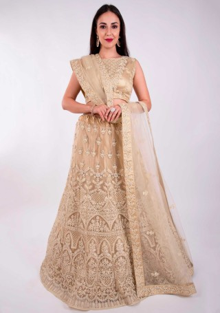 Beige Heavy Coding Embroidered Net Lehenga Choli
